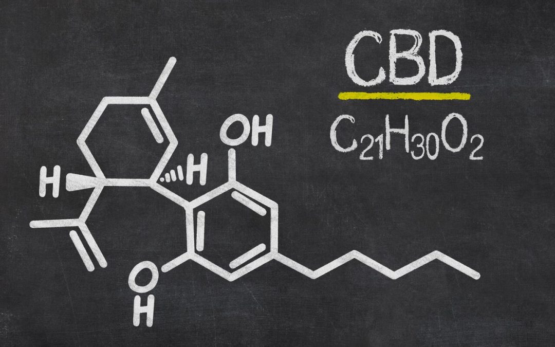 What is CBD? CBD Guide for Beginners